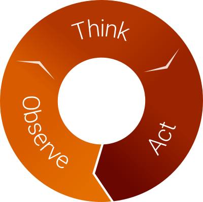 Observe, think, act